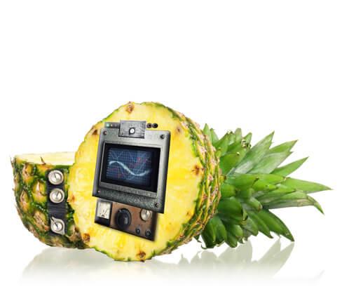 Leistungen-Ananas-Audio-Postproduktion
